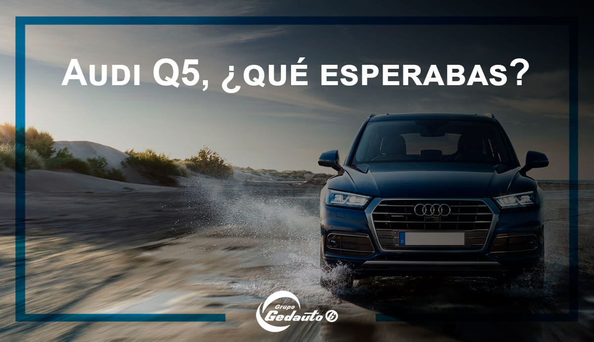 Audi-q5-mas-que-coche-grupo-gedauto