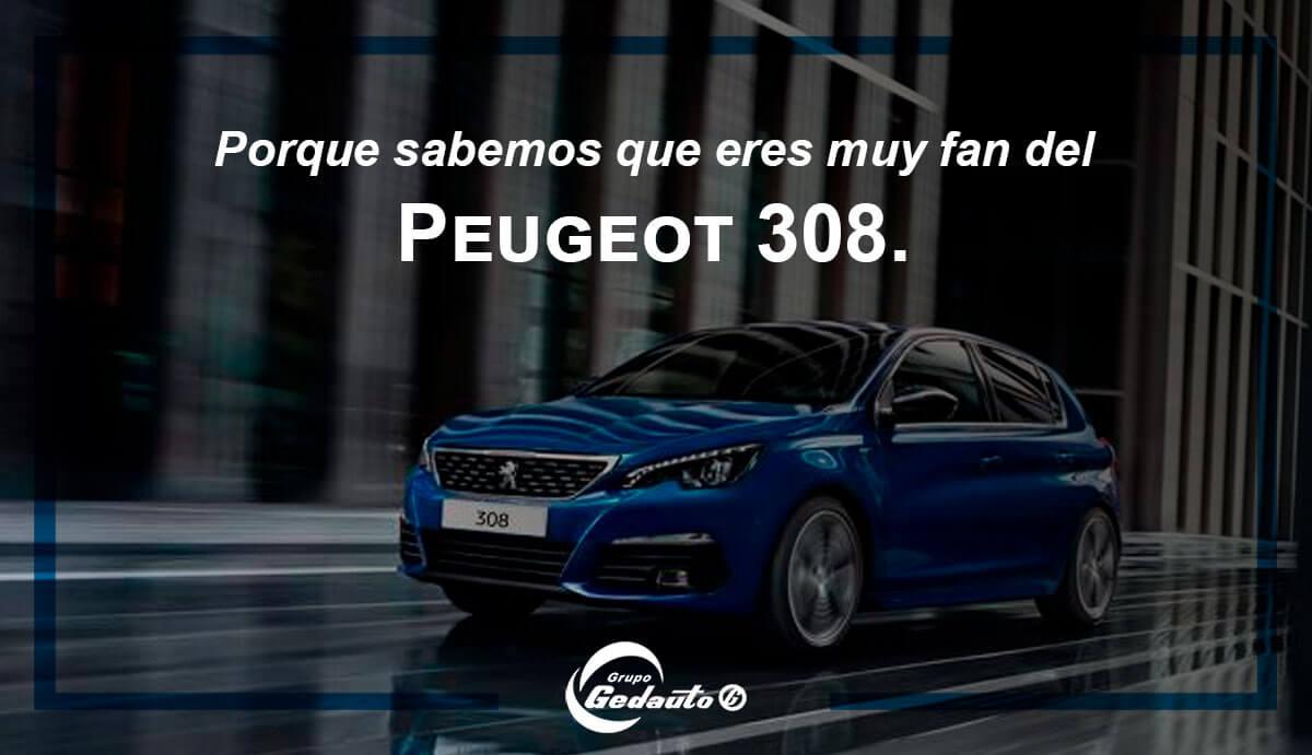 peugeot-308-grupo-gedauto